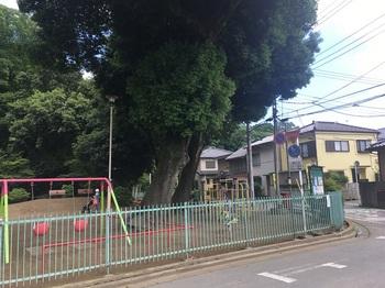 喜多院公園001.jpg