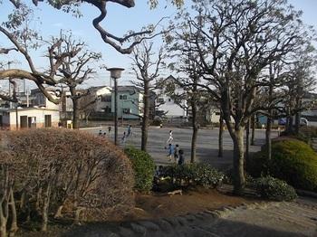 四つ木公園005.jpg