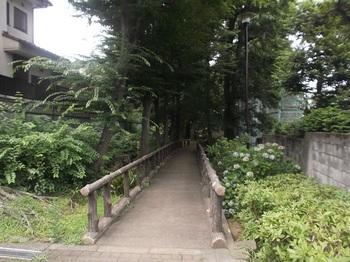 四宮の森公園002.jpg