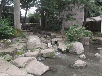 四宮の森公園005.jpg