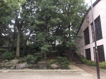 四宮の森公園008.jpg