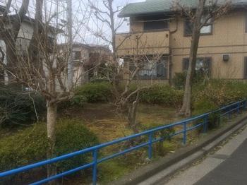 土支田緑地002.jpg