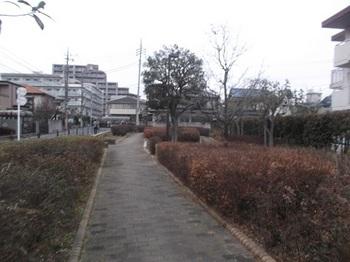 大泉六丁目緑地002.jpg