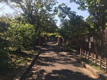 大谷田公園002.jpg