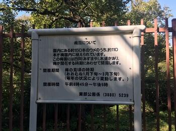 大谷田公園003.jpg