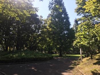 大谷田公園014.jpg