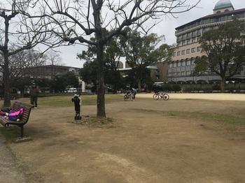 天主公園006.jpg