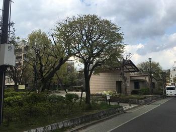 天王公園001.jpg