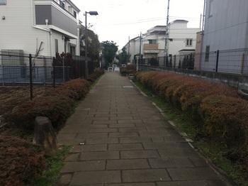 宇奈根下河原緑道004.jpg