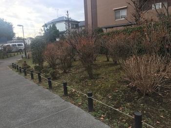 宇奈根中島公園002.jpg
