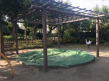 富士見台公園003.jpg