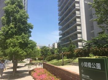 小関橋公園002.jpg