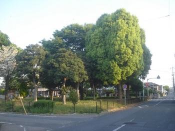 市之坪第二公園001.jpg
