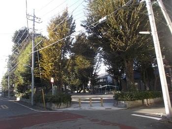 幸町公園001.jpg