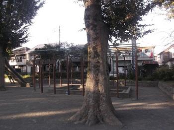幸町公園004.jpg