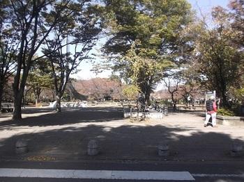 府中公園001.jpg