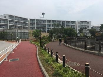 弁天橋東緑地001.jpg