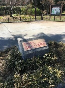 成城みつ池緑地002.jpg