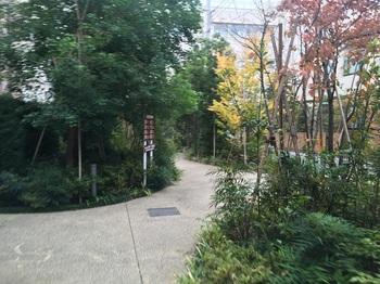 成城一丁目西公園004.jpg