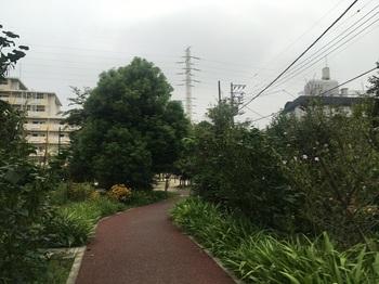 成城八丁目アパート003.jpg