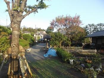 新倉ふるさと民家園004.jpg