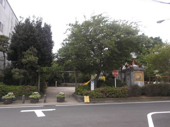 新堀しゃくやく公園001.jpg