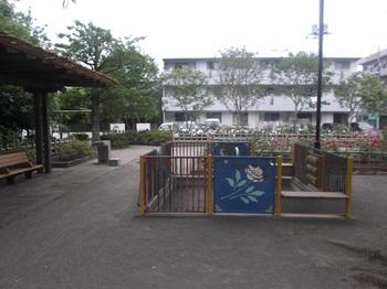 新堀しゃくやく公園004.jpg