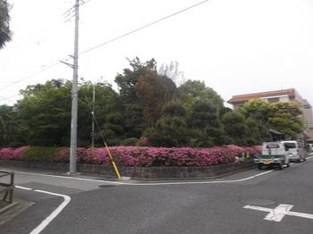 新堀庭園001.jpg