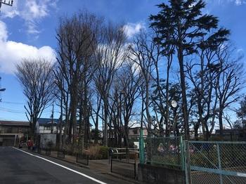 新場の森公園001.jpg