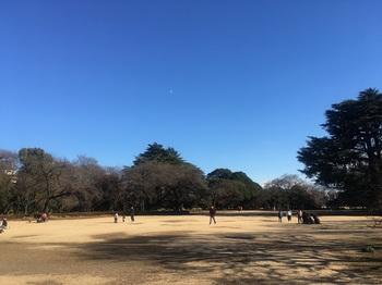 新宿御苑003.jpg