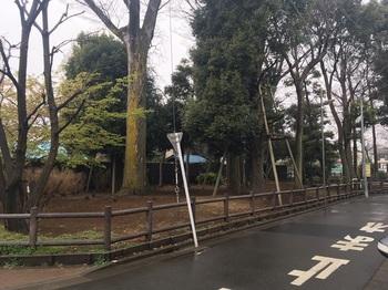 早宮の森緑地001.jpg
