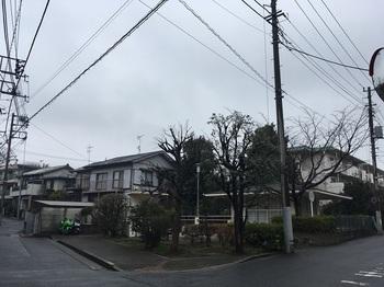 早宮一丁目児童遊園001.jpg