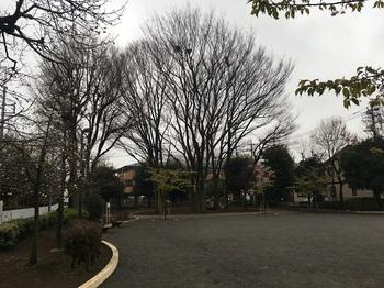 早宮公園002.jpg