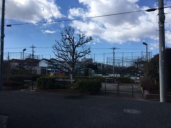 春日町しゃらのき児童遊園001.jpg