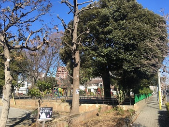 普賢寺公園001.jpg