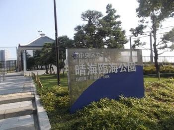 晴海臨海公園001.jpg
