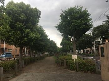 曳舟川002.jpg
