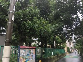 本六公園001.jpg