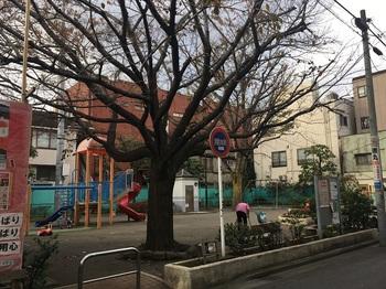 東中延公園001.jpg