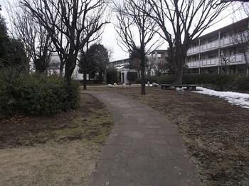 東大泉こもれ陽公園002.jpg