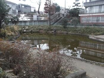 東大泉弁天池公園004.jpg