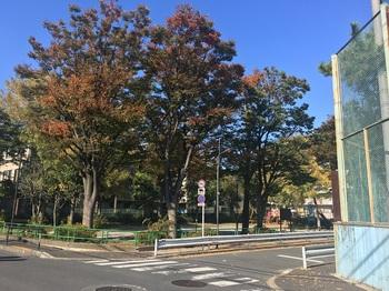 栗島公園009.jpg