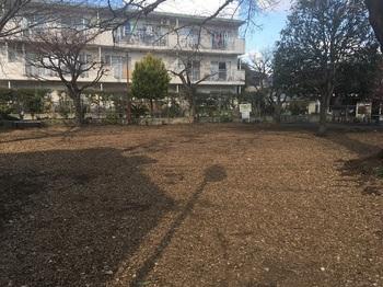 桜樹広場002.jpg