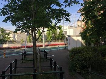 梅丘とちのき公園002.jpg