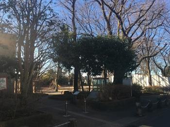 梅里中央公園001.jpg