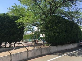 権蔵橋公園001.jpg