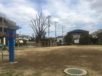 橋戸新田公園001.jpg