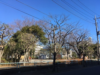 水神橋公園001.jpg