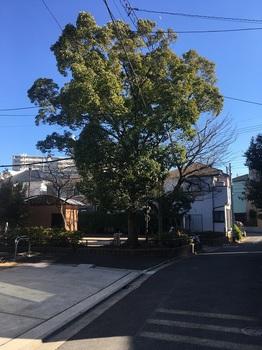 江戸川二丁目児童遊園001.jpg