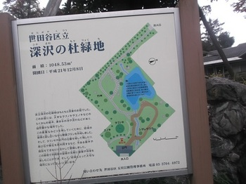 深沢の杜緑地002.jpg
